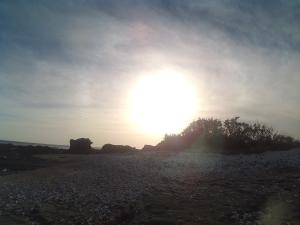 Isla Capitan Tamarindo