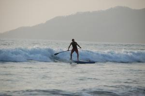 SUP Surf
